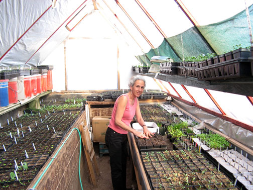 Eve in greenhouse